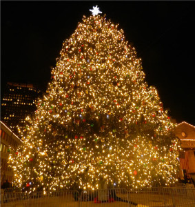 Biggest Christmas Tree in New England Faneuil Hall 2012